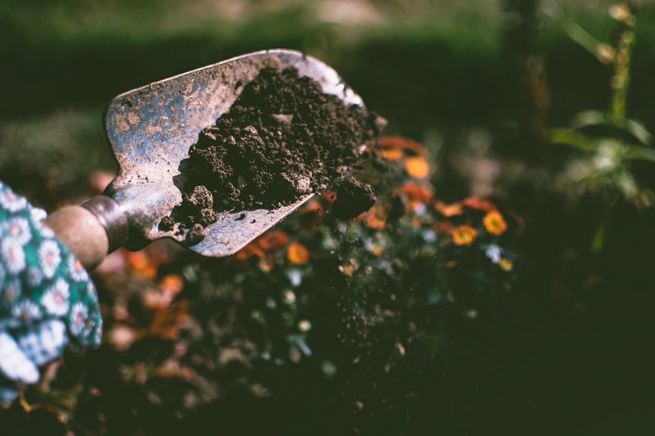 Improve Your Soil with Homemade Fertilizer